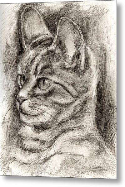 Cat Study Drawing No Three Metal Print