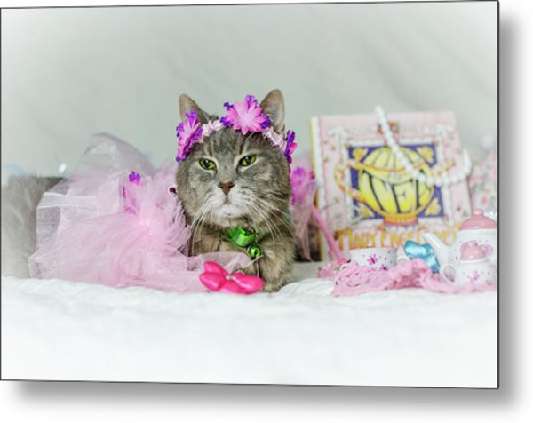 Cat Tea Party Metal Print