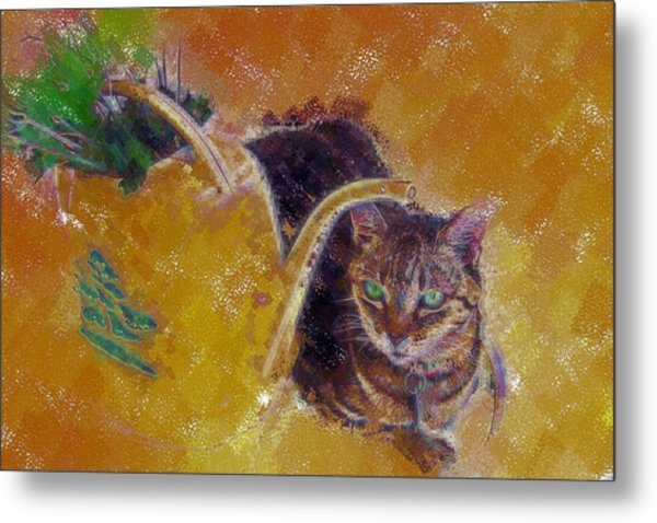 Cat With Watering Can Metal Print