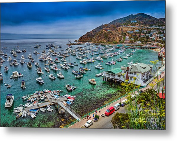 Catalina Island  Avalon Harbor Metal Print