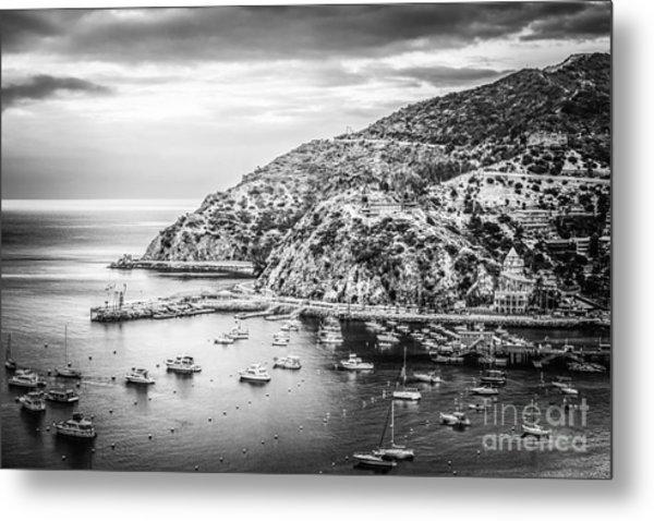 Catalina Island Black And White Photo Metal Print