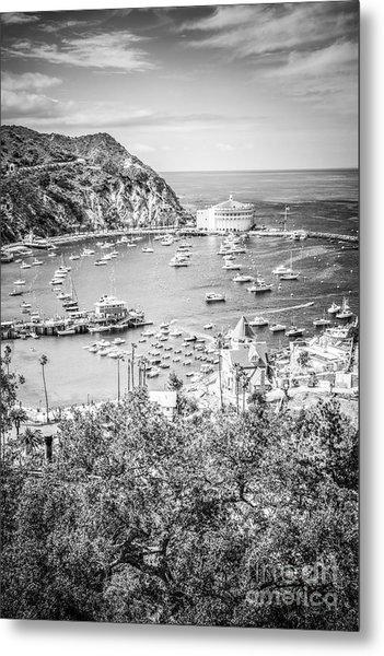 Catalina Island Vertical Black And White Photo Metal Print
