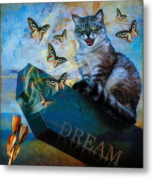 Catch A Dream Metal Print