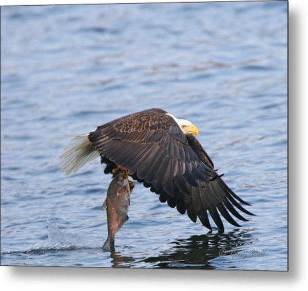 Catch Of The Day...for Both Of Us Metal Print