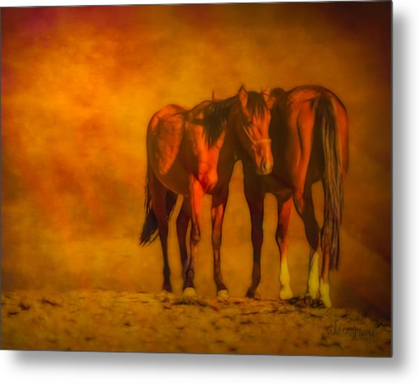 Catching The Last Sun Digital Painting Metal Print