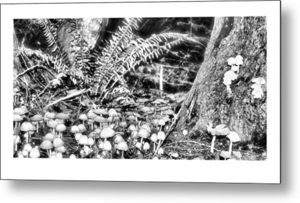 Caterpillars Playground 2 Metal Print by J D Banks