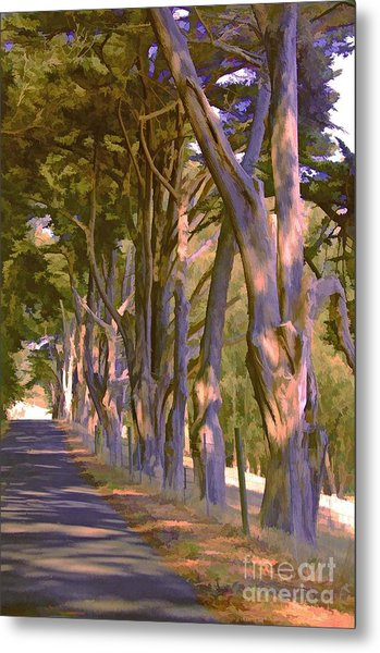 Cathedral Of Trees Metal Print