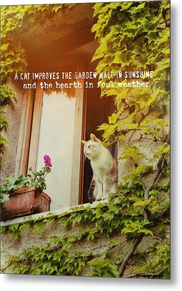 Cats Eye View Quote Metal Print by JAMART Photography
