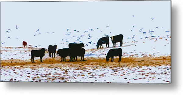 Cattle And Birds Metal Print