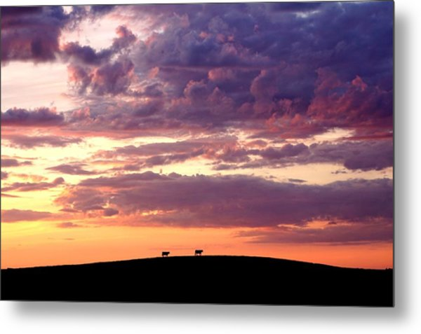 Cattle Ridge Sunset Metal Print