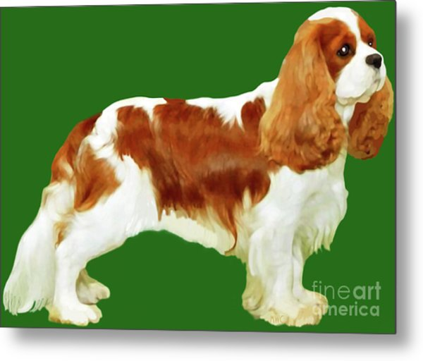 Metal Print featuring the painting Cavalier King Charles Spaniel by Marian Cates