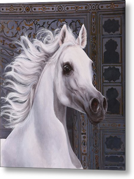 Cavallo A Punta Metal Print