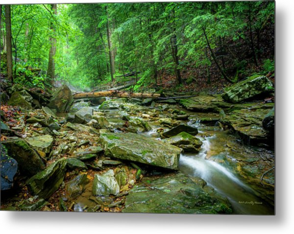 Cave Branch After A Spring Shower Metal Print
