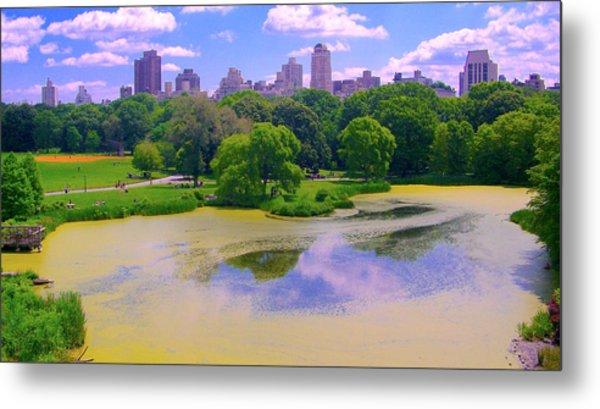 Central Park And Lake, Manhattan Ny Metal Print