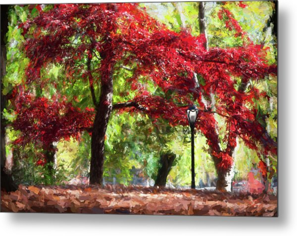 Central Park In Manhattan Metal Print
