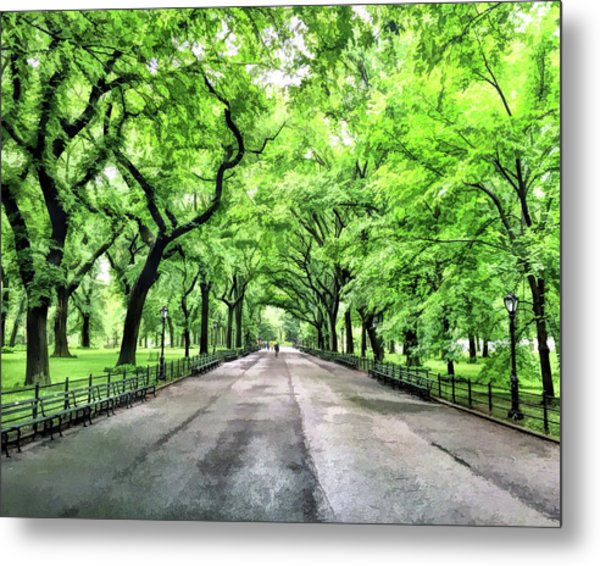 New York City Central Park Mall Metal Print