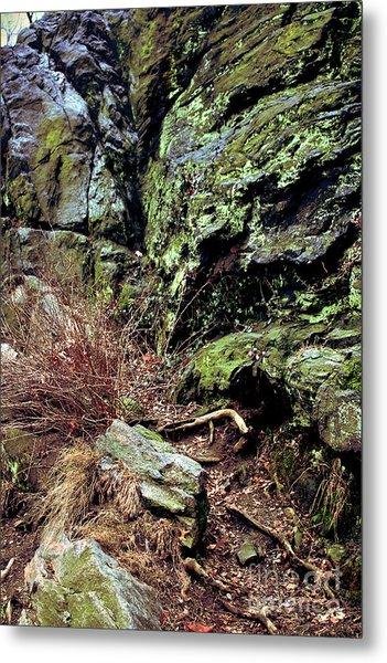 Central Park Rock Formation Metal Print