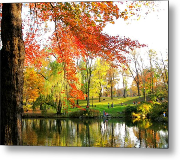 Central Park Metal Print by Yannick Guerin