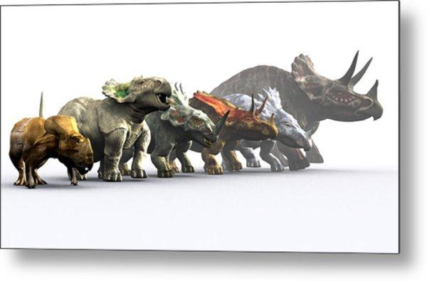 Ceratopsian Dinosaurs Metal Print by Christian Darkin