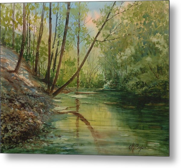 Chagrin River In Spring Metal Print