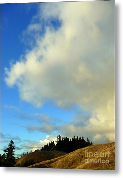 Change In The Air Metal Print by JoAnn SkyWatcher