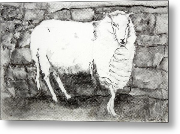 Charcoal Sheep Metal Print