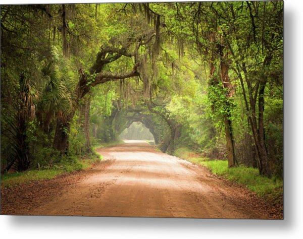 Charleston Sc Edisto Island Dirt Road - The Deep South Metal Print