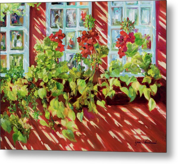 Charleston Window Boxes Metal Print