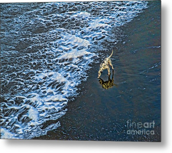 Chasing Waves Metal Print