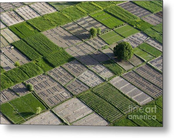 Checker Board Fields Metal Print by Tim Grams