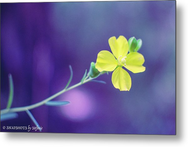 Cheer Up Buttercup Metal Print