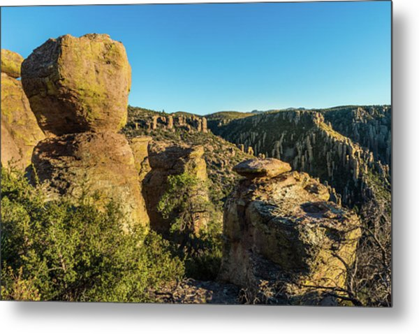 Cheers For Chiricahua Metal Print