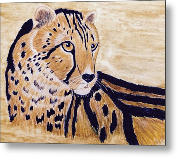 Cheeta Metal Print
