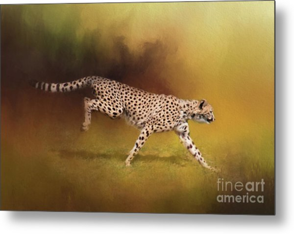 Cheetah Running Metal Print