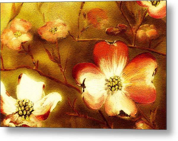 Cherokee Rose Dogwood - Glow Metal Print
