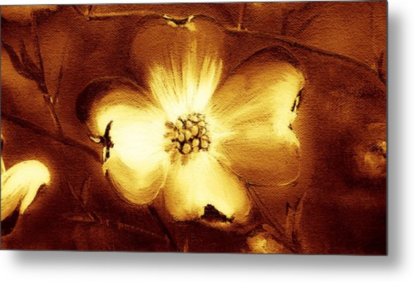 Cherokee Rose Dogwood - Single Glow Metal Print