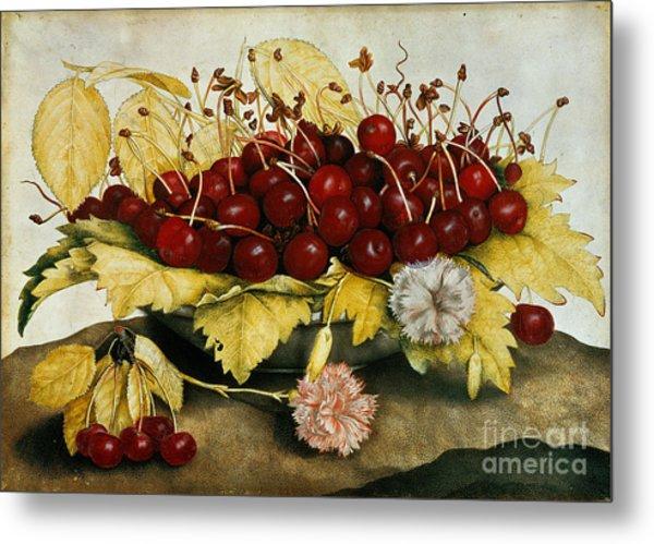 Cherries And Carnations Metal Print