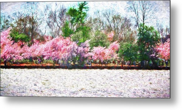 Cherry Blossom Day Metal Print