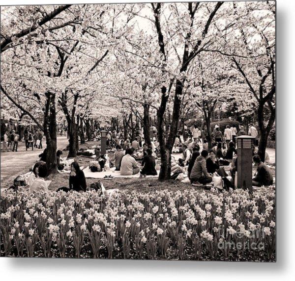 Cherry Blossom Festival Metal Print