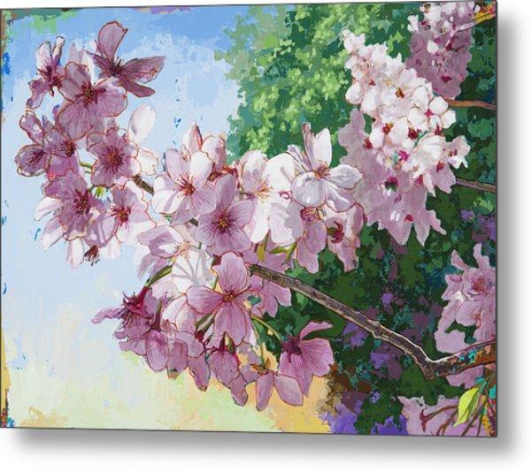 Cherry Blossoms #2 Metal Print
