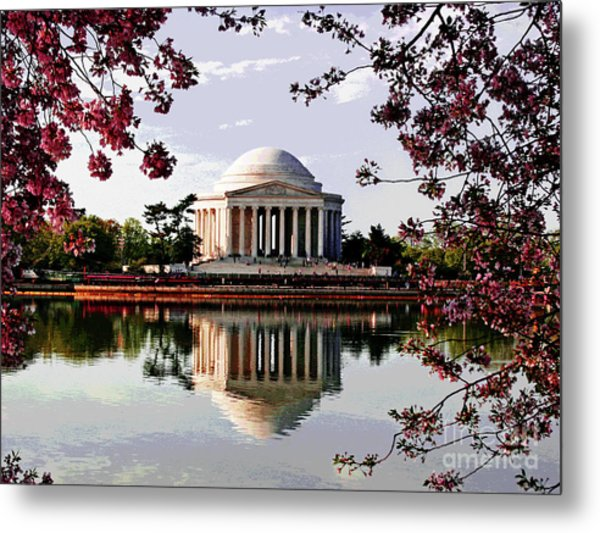 Cherry Blossoms At Jefferson Memorial Metal Print