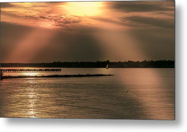 Chesapeake Gold Metal Print