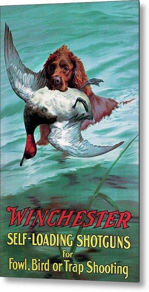 Chesapeake Retriever With Duck Metal Print