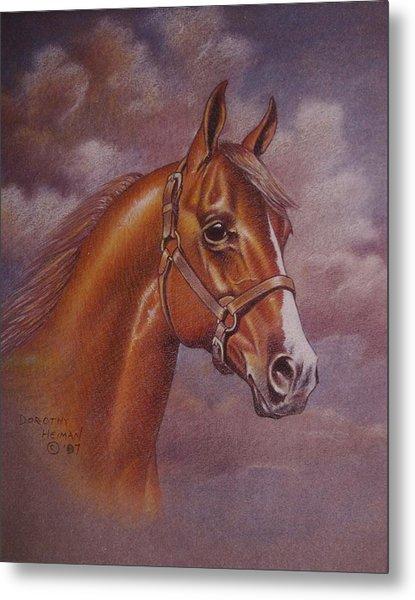 Chestnut Quarter Horse Metal Print by Dorothy Coatsworth