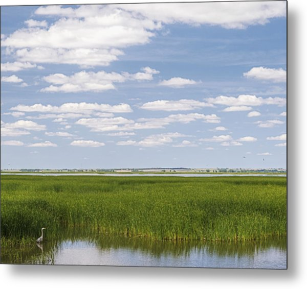 Cheyenne Bottoms Metal Print