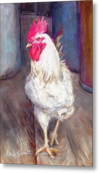 Chic Rooster Metal Print