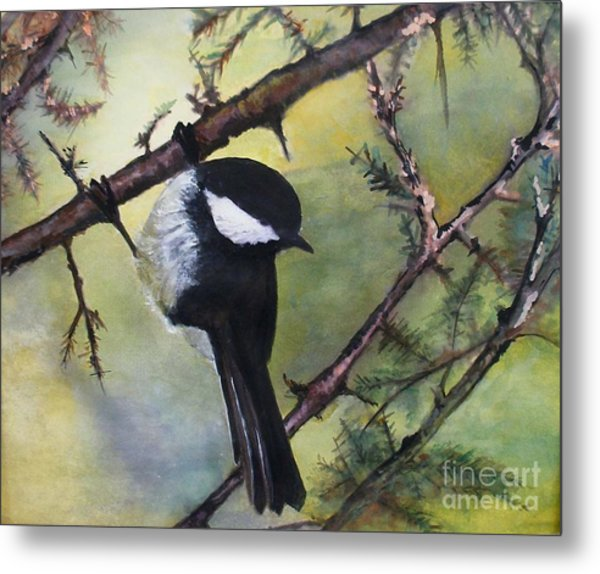 Chickadee Autumn Metal Print by Sibby S