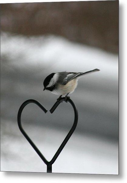 Chickadee On Heart Metal Print by George Jones