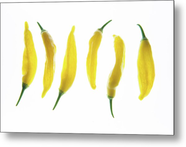 Chillies Lined Up II Metal Print