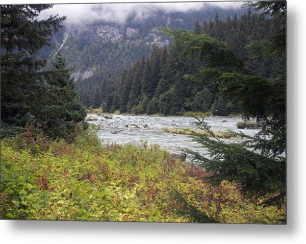 Chillkoot River 3 Metal Print